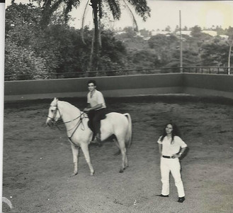 Cavalos - Dundo