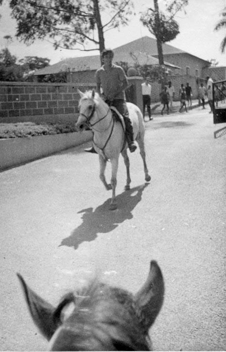 Vitó a entrar nos cavalos montando o Azal  O Azal e o Inge eram os meus cavalos preferidos, passei muitas horas na cavalariça com eles...Victor Valente