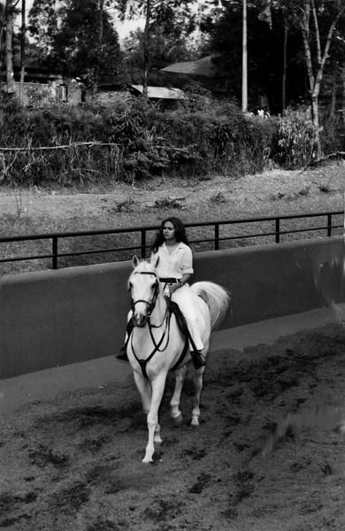 Cavalos- Dundo