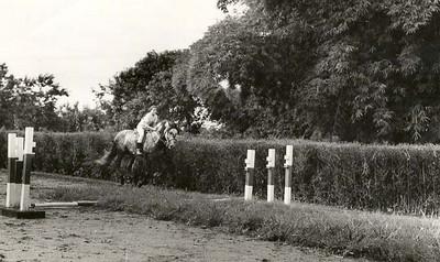 Picadeiro antigo de saltos ( relva e terra batida) Tininha Santos montando o Rolo