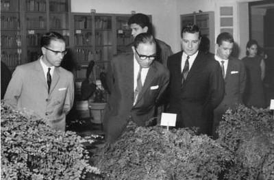 Floricultura Alberto Costa, Eng. Rêgo?, Mendonça, Simons, ?, Janeca