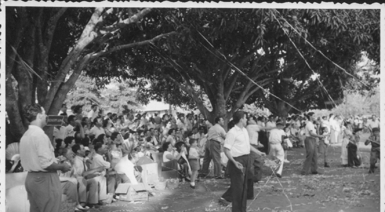 Andrada 1954