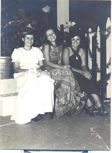 Estufa de Andrada - Fim do ano 1973