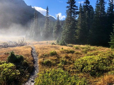 Trail through the meadow