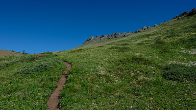 The last section of trail before reaching the ridge
