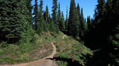 Trail through the meadow at the ridge