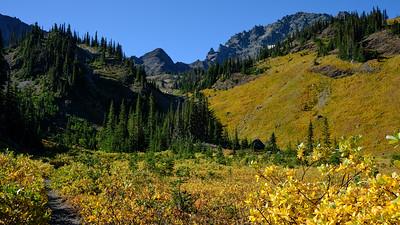 Trail through the gold meadow