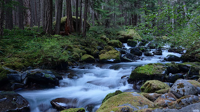 Royal Creek