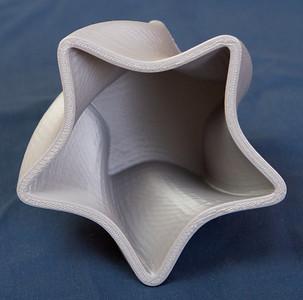 5 point twist vase - My Design