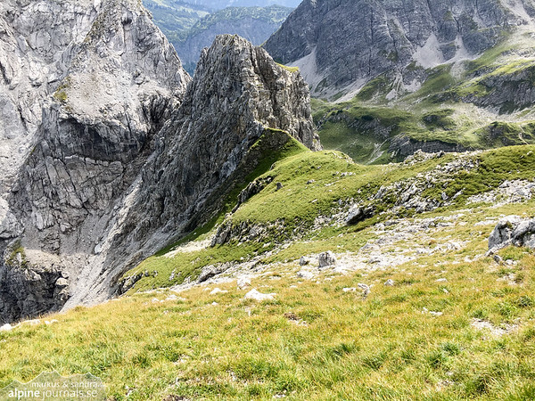 The very steep descent to Wildental (poles recommended if taking this descent!). From the route exit, continue downhill on the grass. Follow the grassy patch down left in the picture. It will turn to very steep gravel.