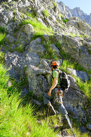 Grass climbing at or near the first grass band.