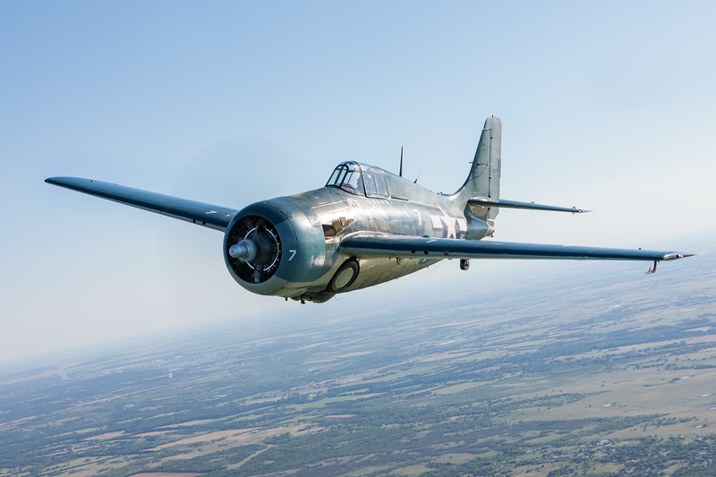 Greg Shelton's wildcat. This time photographed from a Bonanza, allowing us to get a greater variety of angles.