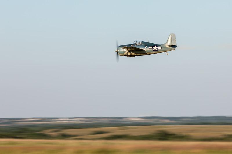 Wildcat in flight.