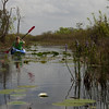 Description - Kayaker On Canoe Trail  <b>Title - Wilderness Canoe Trail</b> <i>- Matt Claiborne </i>