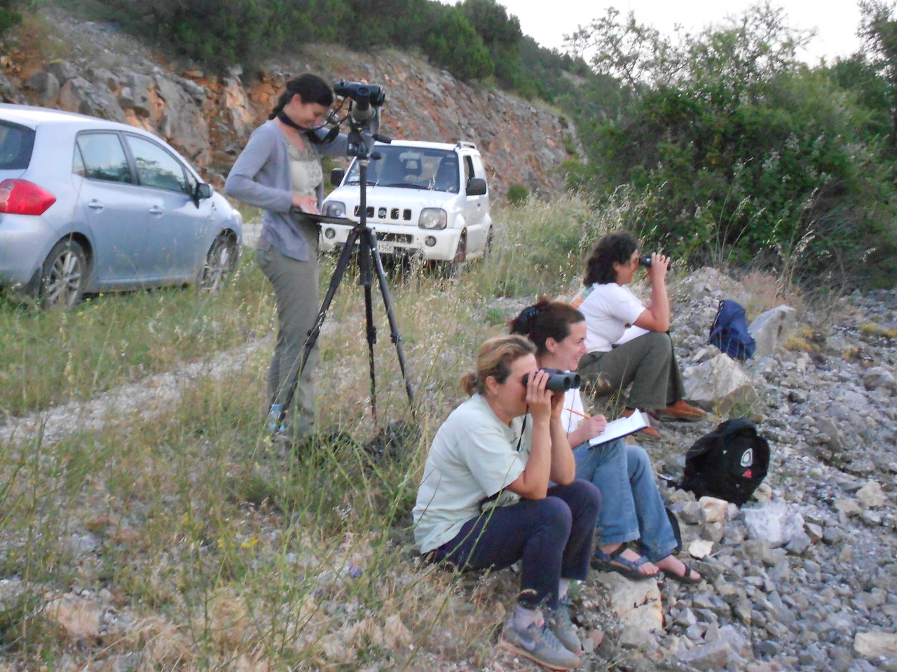 Monitoring: Bird counting 2014