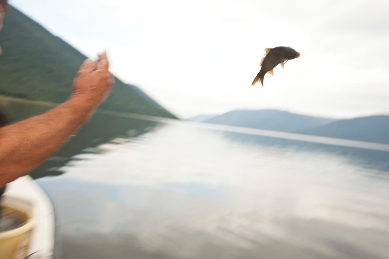 Experimental Fishing 2011