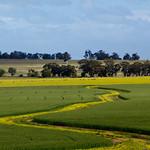 20130922 - Wheat Fields 025