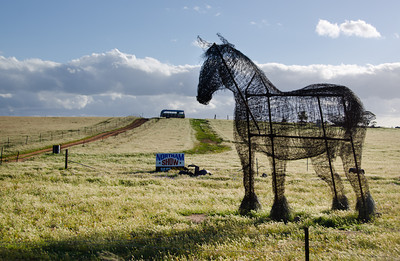 20130921 - Clydesdale Sculpture 004