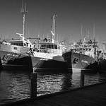 maritime_fishing boats_david white_