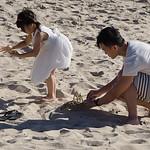 Fun_Playing-on-the-Beach_Kim-McAvoy
