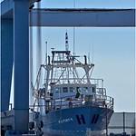 Maritime_Drydock_Bruce Finkelstein