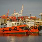 Maritime_Tuggs_Paul McKeown