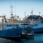 Maritime_Fishing Fleet_R Ross