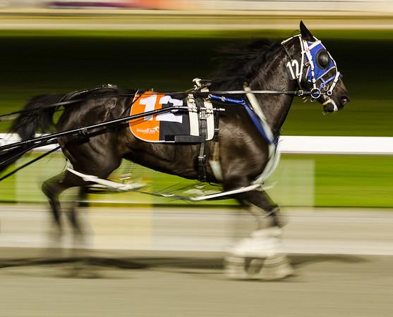 Race 4 - Kim McAvoy