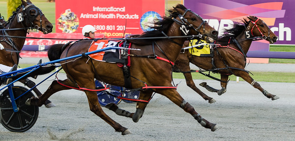 Race 1 - Kim McAvoy