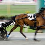 Race 2 - Kim McAvoy