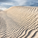 scales on dune