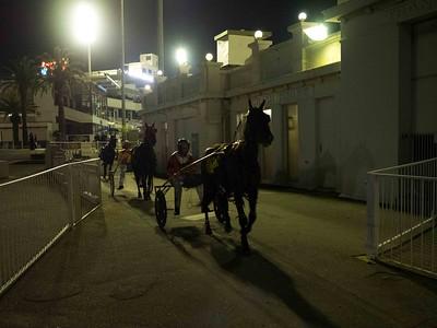 Race Over_Greg Bilton