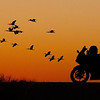 Description - Birds and Motorcycle At Sunset <b>Title - Sunset</b> 3rd Place <i>- Don Durfee</i>