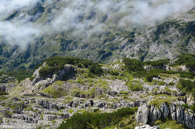 Karst terrain at the Gottesacker plateau