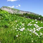 Hohe Ifen hiking, Kleinwalsertal