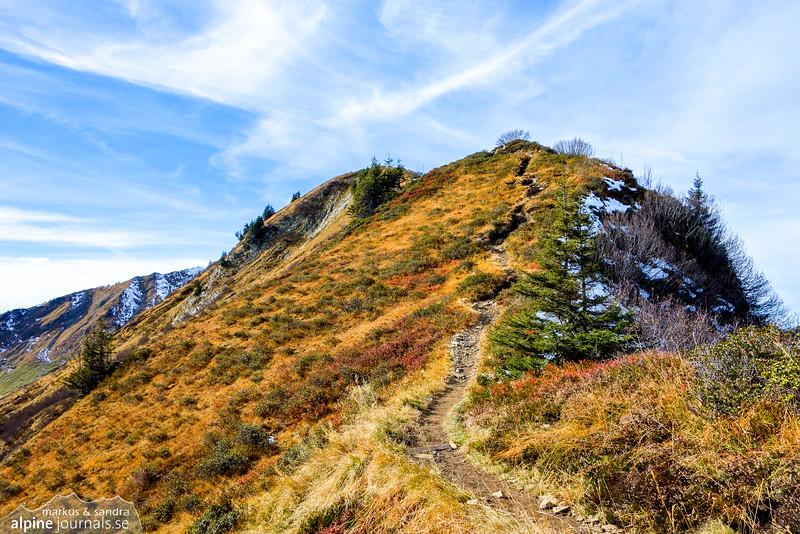 Part of the ridge of Walmendingerhorn in October - the last chance for golden Autumn