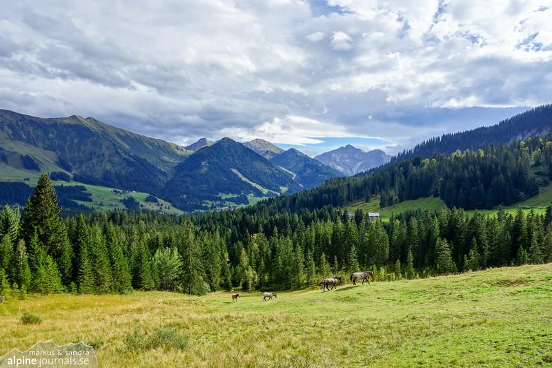 View to Riezlern, Kleinwalsertal