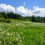 Piesenkopf hiking 2015-06-28