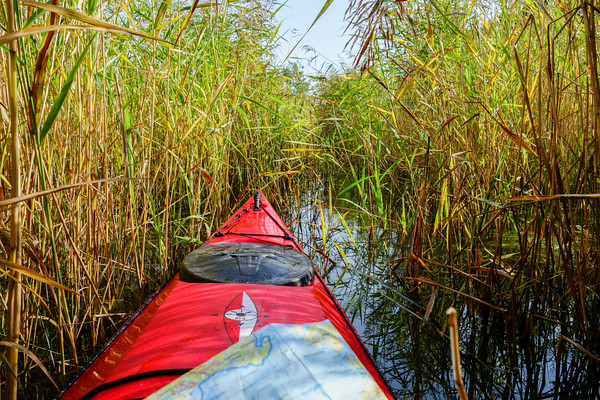 A hidden passage for kayaks only. The paddle has no room to swing, so forward motion is created by pulling gently at the reeds. Near Ekesgarn, Muskö.