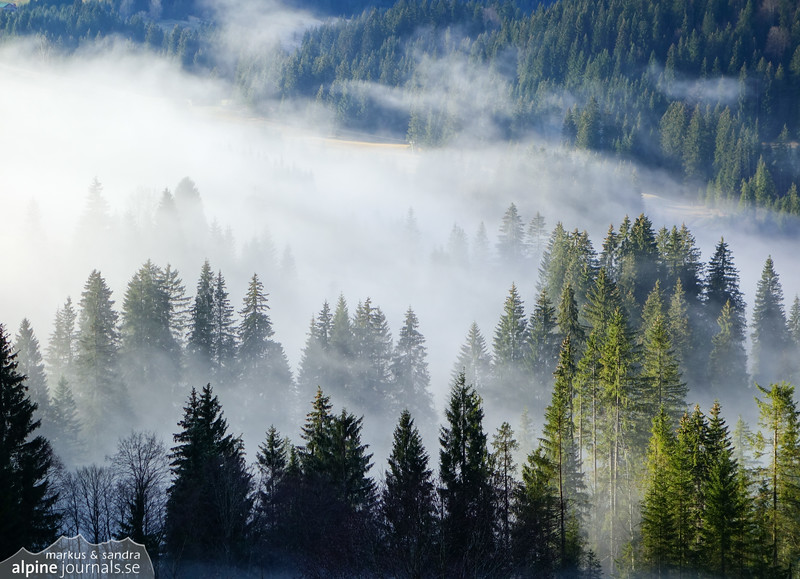 Fog over the Schwarzwasserbach ravine, Kleinwalsertal. Rain must not mean bad weather here.