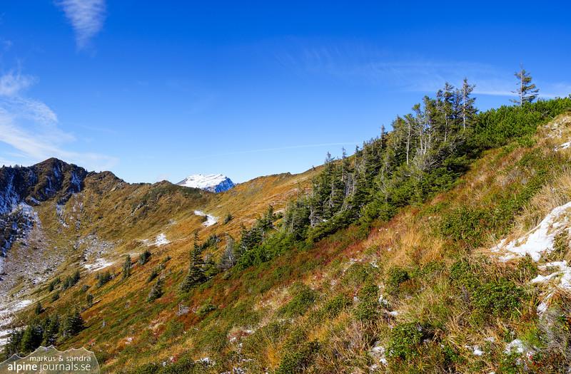 Autumn colors near Steinmandl
