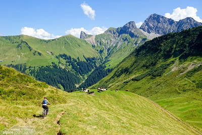From Gumpener Grätle (1820m) it was a smooth ride among cows down the grassy hill sides.