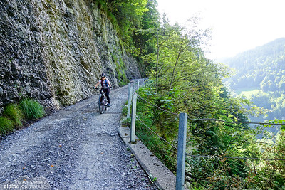 After a long descent and a much needed water refill at Vorderkriegbödenalpe (1390m), the descent continued on endless gravel roads all the way down to Au (800m)
