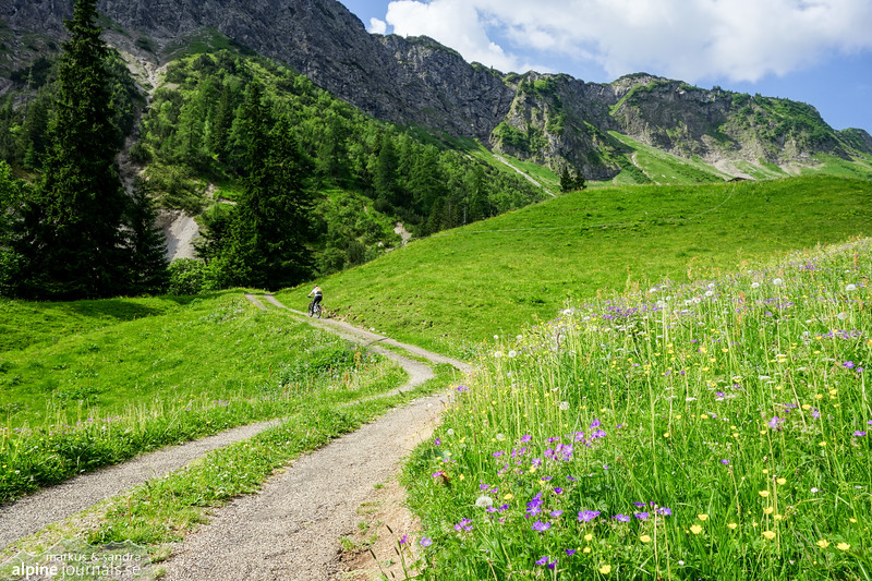 Near the upper end of Rappenalptal. The meadows are flowering with woodland geranium and buttercup.
