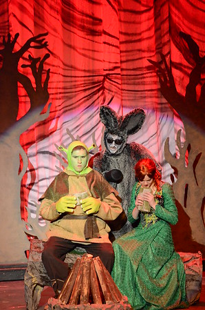 Shrek Musical 2015