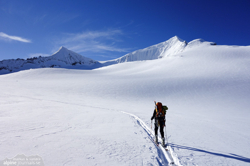 Approaching Venedigersharte on the Obersulzbachkees glacier.