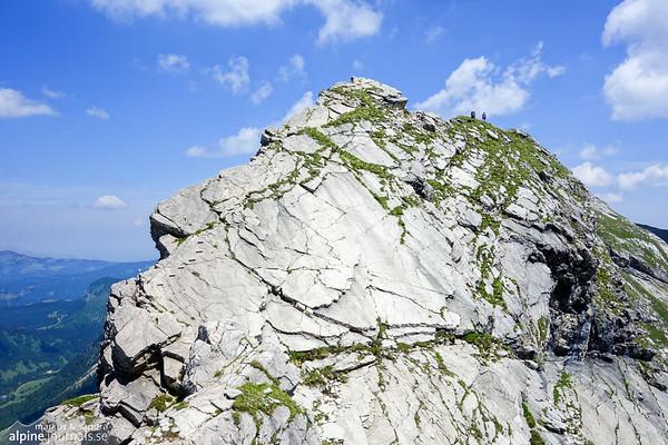 A gorgeous summits on the Hindelanger ferrata.