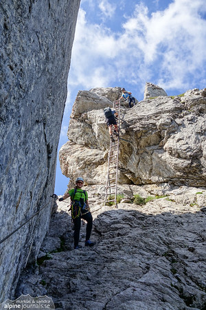 One of many ladders, somewhere in the middle of the Hindelanger ferrata.