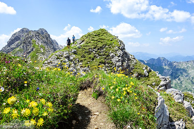Walking terrain at the last third of the Hindelanger ferrata. Though there are still some peaks to pass...