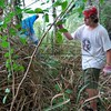<b>Boy Scout Troop 215 Clearing Undergrowth</b> April 16, 2011 <i>- Kay Larche</i>